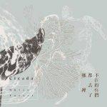 【派歌发行回顾】透过音乐的光亮,跟随Cicada畅游在唯美情景之中!