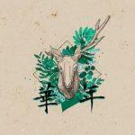 【派歌新发行】锦瑟《华年》,鹿先森唱出悲欢交织的感动!